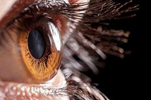 Профилактика глазных осложнений диабета